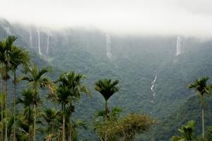 Incredible Goa